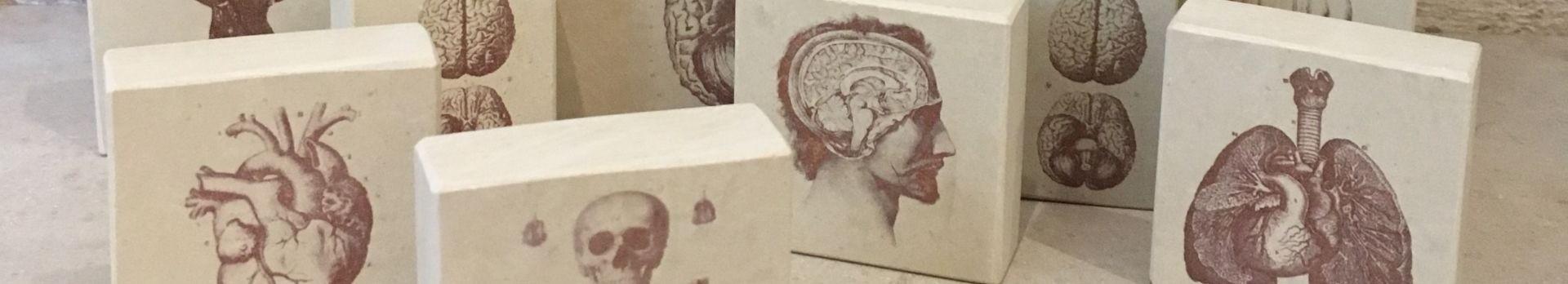 Minilitos estampas sobre piedra